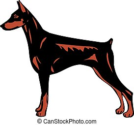 Dobermann Pinscher breed, dogs illustration