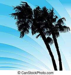 doblando, ventoso, árboles de palma
