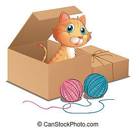doboz, belső, macska
