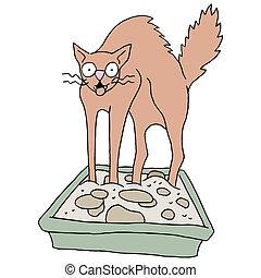 doboz, hordágy, koszos, macska