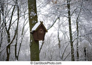 doboz, tél, hó, fészkelés, alatt, közben