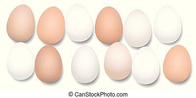 doce, huevos, docena, pedazos