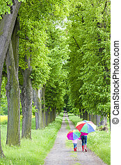dochter, haar, lente, steegje, moeder, paraplu's