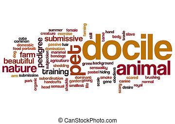 Docile word cloud concept