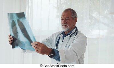 docteur, bureau., regarder, poitrine, personne agee, rayon x