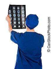 docteur, monde médical, isolé, fond, blanc, photographie, rayon x, analyser