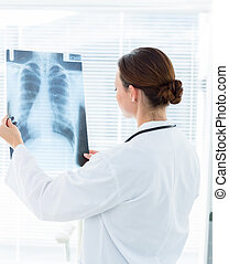 Doctor analyzing Xray - Rear view of female doctor analyzing...