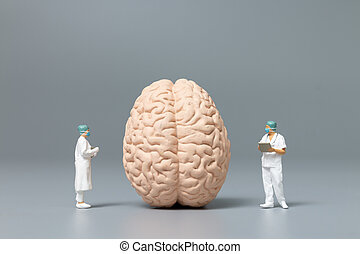 Doctor and nurse observing and discussing about human brain