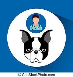 doctor cartoon veterinarian dog french bulldog