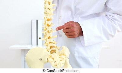 Doctor explaining skeleton spine model - Doctor explaining...