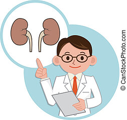 Doctor for a description of the kidney