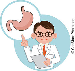 Doctor for a description of the stomach