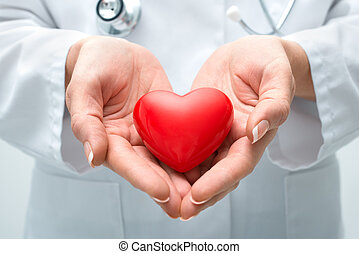 Doctor holding heart - Female doctor with the stethoscope ...