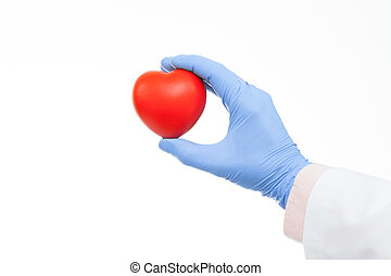 Doctor holding heart shaped toy in hand