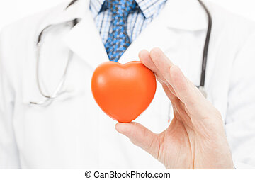 Doctor holding toy heart - health care concept