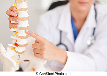 Doctor pointing at bone in spine - A doctor is pointing at a...