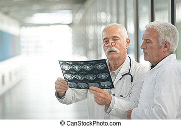 doctors examining an x-ray