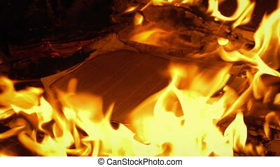 Generic document with writing on it is put on fire and burns up