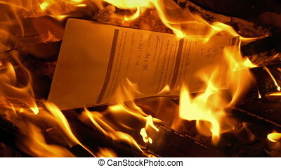 Document With Writing Put On Fire - Generic Content -...