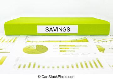 documenti, budget, sommario, grafici, risparmi, manageme, relazione