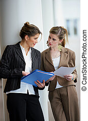 documentos, discutir, mulheres negócios