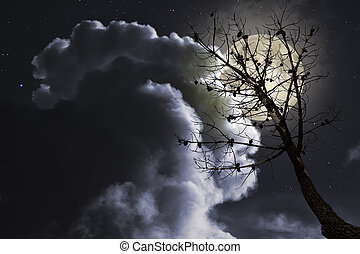 dode boom, in, een, volle maan, nacht