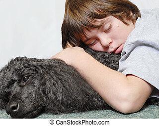 dodici, vecchio anno, ragazzo, addormentato, su, barboncino...