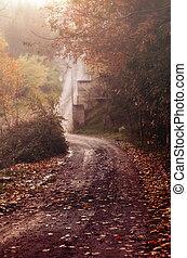 dof, raso, parque, outono, nevoeiro, vale