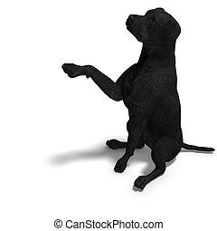 dog., 切り抜き, ラブラドル, 上に, レンダリング, 道, 影, 3d, 白, レトリーバー