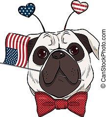 Dog 4th Of July