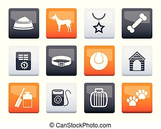 Dog accessory and symbols icons over color background