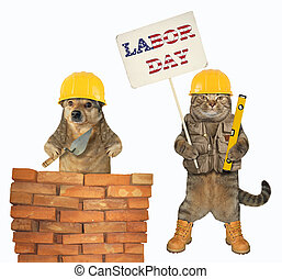Dog and a cat build a wall