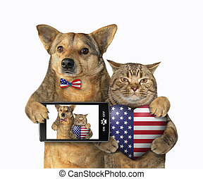 Dog and a cat with an american heart