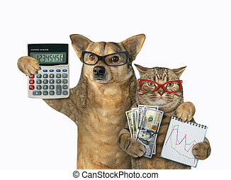 Dog and cat are bankers 3