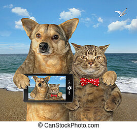 Dog and cat made selfie on the beach