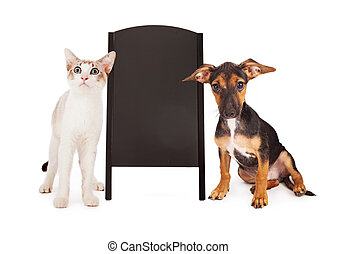 Dog and Cat With Chalkboard Sandwich Sign