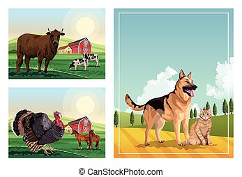 dog and cat with farm animals in the camp scenes
