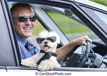 Dog and his owner traveling in a car