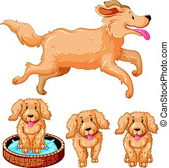 Dog and puppies with brown fur illustration