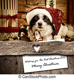Dog and Santa Christmas greeting  card