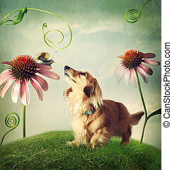 Dog and snail in friendship in fantasy landscape