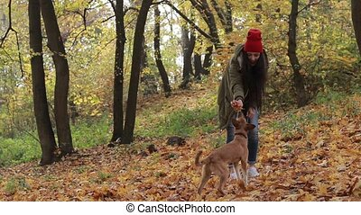 Dog and woman owner playing in autumn park - Happy young...