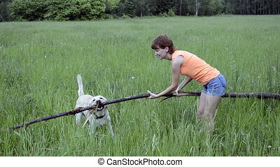 Dog and woman playing with a stick