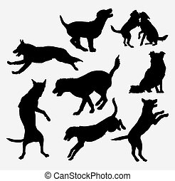 Dog animal training silhouette