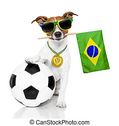 dog as soccer with medal and flag - fifa world cup dog...