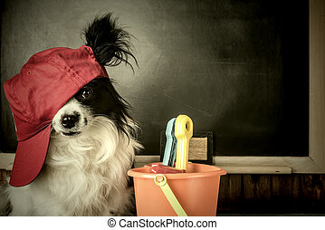 Dog as teacher or student thinking  vacation