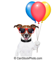 dog balloons and cotton candy - dog with bunch of balloons...