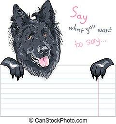 dog Belgian Shepherd Dog, Groenendael breed - Vector dog ...