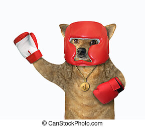 Dog boxer with a raised paw