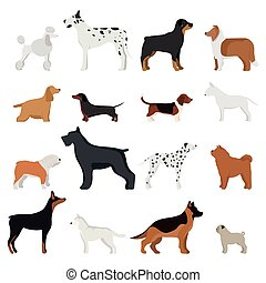 Dog breed illustration